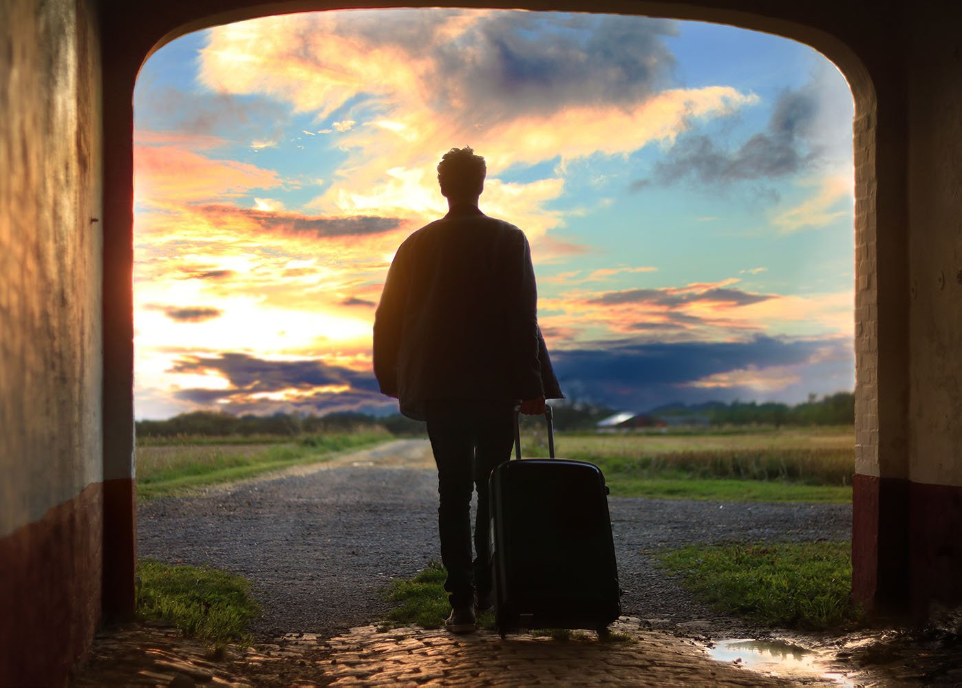 Man holding luggage, facing a meadow.